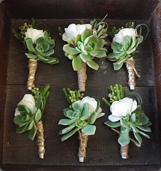 Jami Beth Bouts in a box heavenly blooms