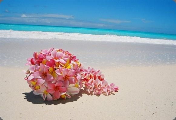 FL000028-770305 aloha island weddings