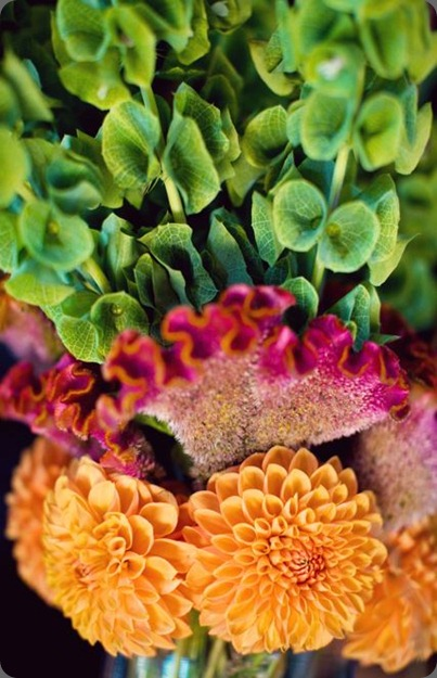 Meg_Rahul-10341 soulflower