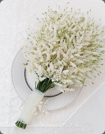 mwa104448_win09_dreamy_xl astilbe martha stewart