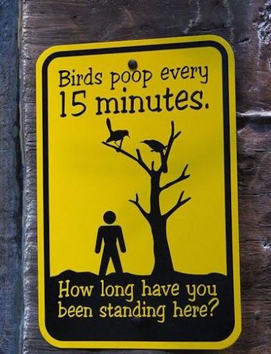 birds-poop-sign