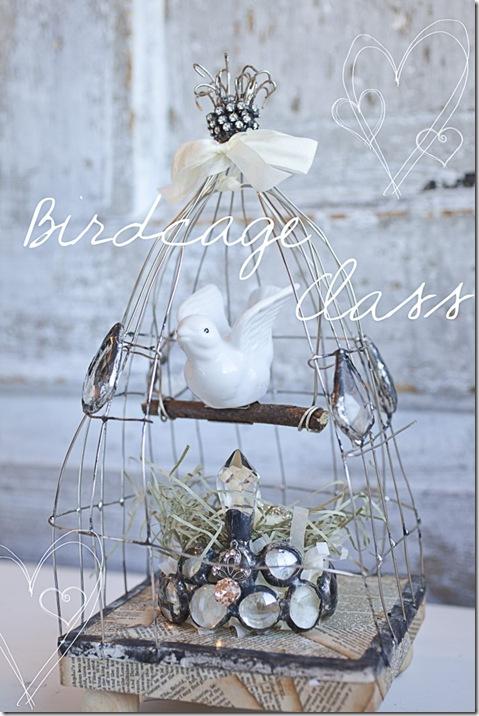 Birdcage-Class-3-682x1024