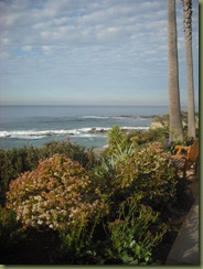Laguna Beach jan 20 003
