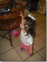 June 20 2009 029