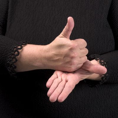 Curso de Interpretacion del Lenguaje de Signos