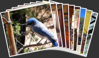 View THE GEORGE WALKER HOUSE...BED & BREAKFAST FOR BIRDERS
