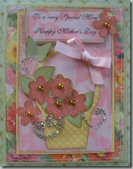 to a special mom 2011-04-28 008
