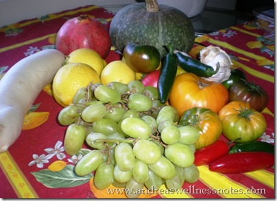 November Farmers Market 13