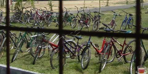 basikal