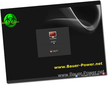 Bauer-Puntu login