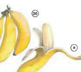 bananas <!  :en  >Fruits<!  :  > things english through pictures english through pictures