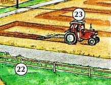 22. fence 23. tractor