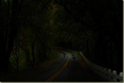 Multnomah Falls 009