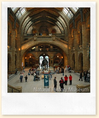 natural_history_museum