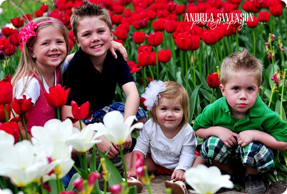 Kids and Tulips cr