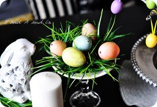 eggs cr