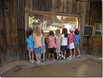 Zoo 014