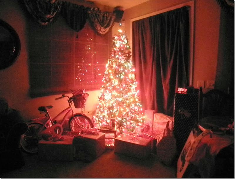 Christmas Fun 130