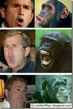 bush-funny-face-4