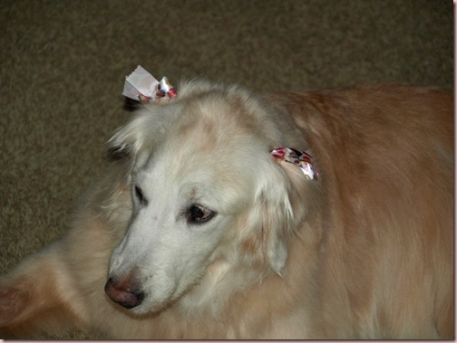 ella bows