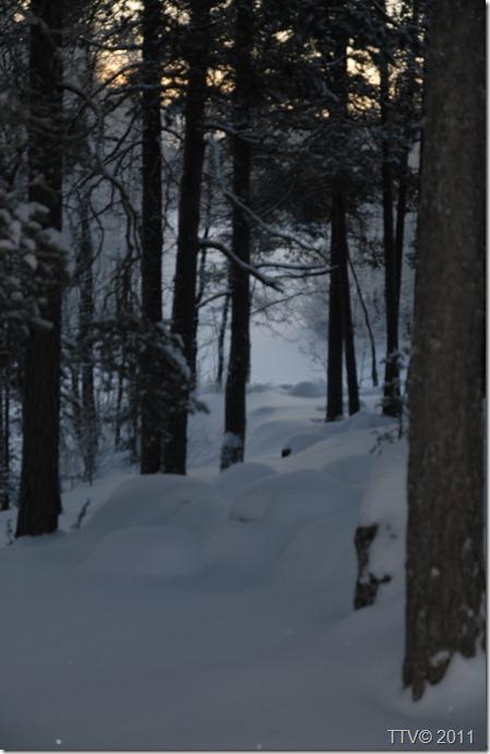 haapijärvi 015