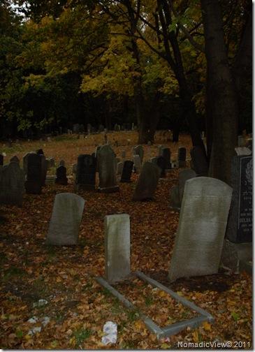 Staten Island Autumn Graveyard