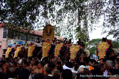 Thalapoli Pooram Festival - Elephant Procession