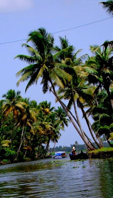 Beautiful Backwaters of Alleppey...