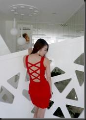 Zhu Songhua (15)