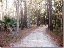 Trail In 1