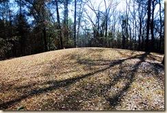 SE Mound 2