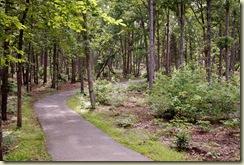 nmp 03 trail