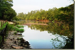 edisto river upstream
