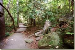 carrick creek trail