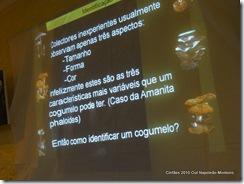 Cinfães APDVBestança out 2010 horkshop sobre fungos Fot Napoleão Monteiro