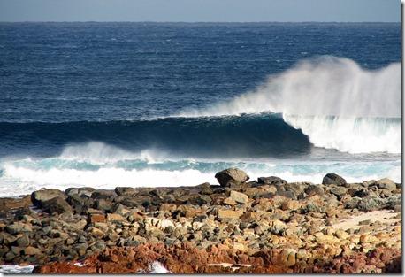 North Point, bancada excelente, ondulação certa e vento terral deixam a onda perfeita. Foto: Tiago Dias