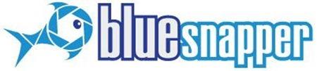 BlueSnapper