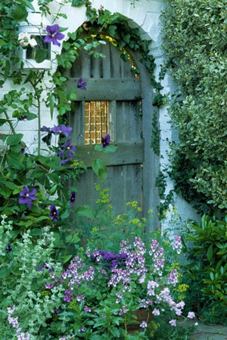 private garden. Sussex. Blue garden gate. Clematis 'The President'