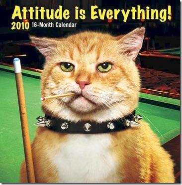 Cat.Calendar