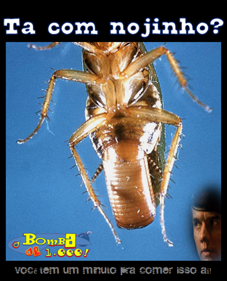Nojinho