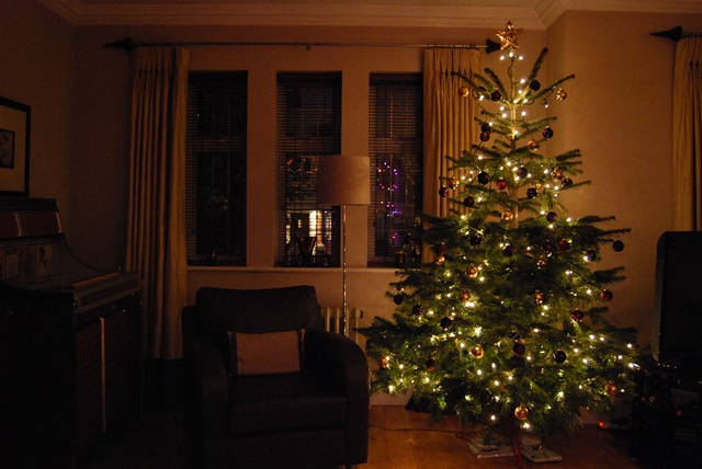 Christmas tree in evening