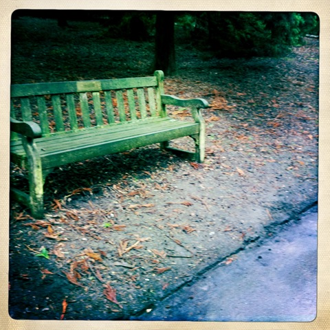 February - A park bench