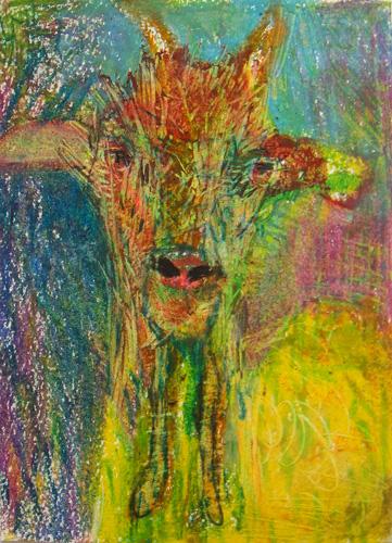 Goat Nr18