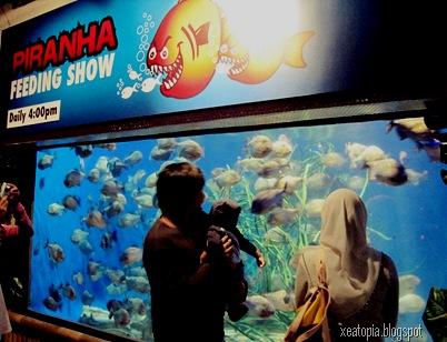aquaria 021