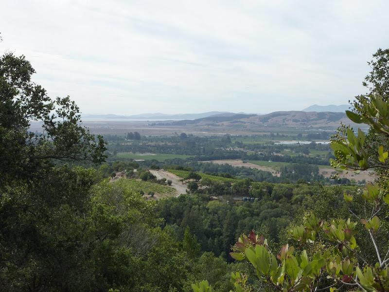 Sonoma views