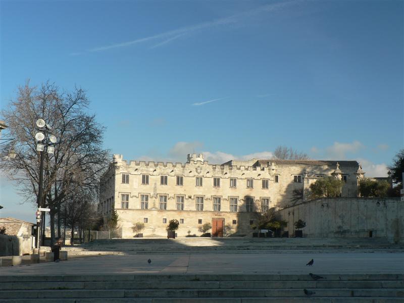 Petit Palais in Avignon