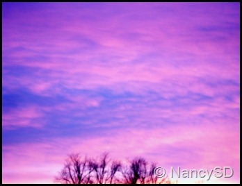 Nov sky 5 pink