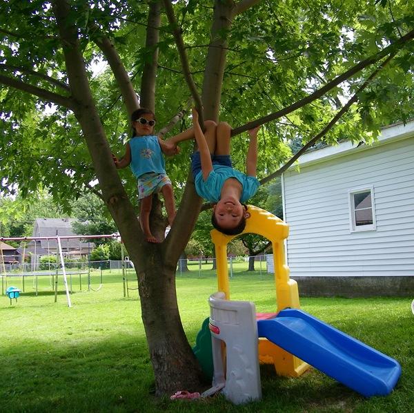 Abby hang