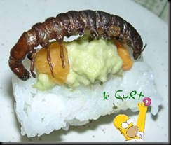 Sushi de Inseto 09