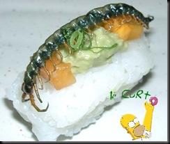 Sushi de Inseto 12